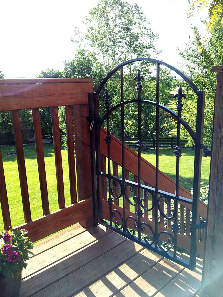 F22 Iron Fence